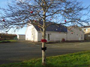 Festive trees in car park 1