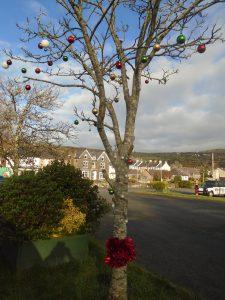 Festive trees in carpark 3